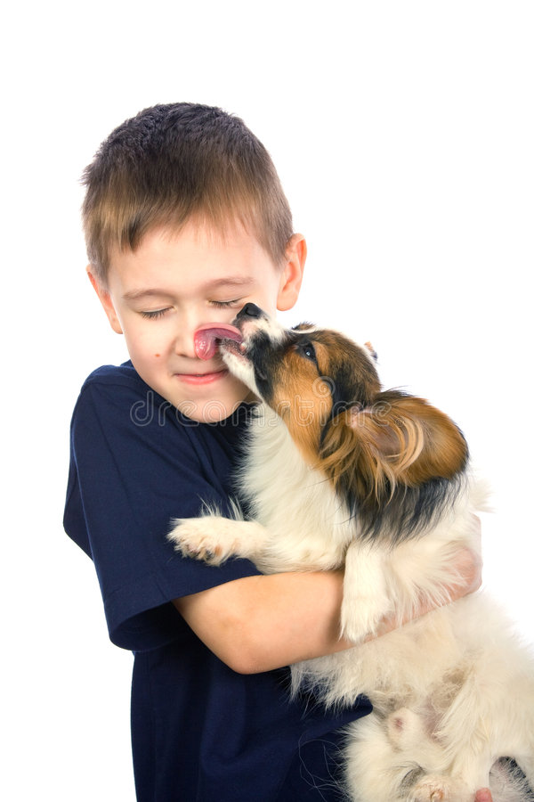 Puppy licking child face royalty free stock photo