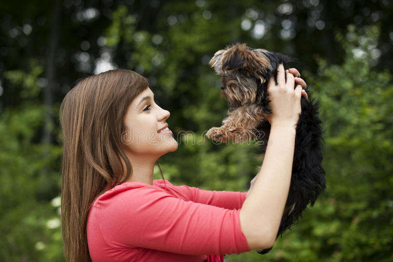 Puppy love royalty free stock images