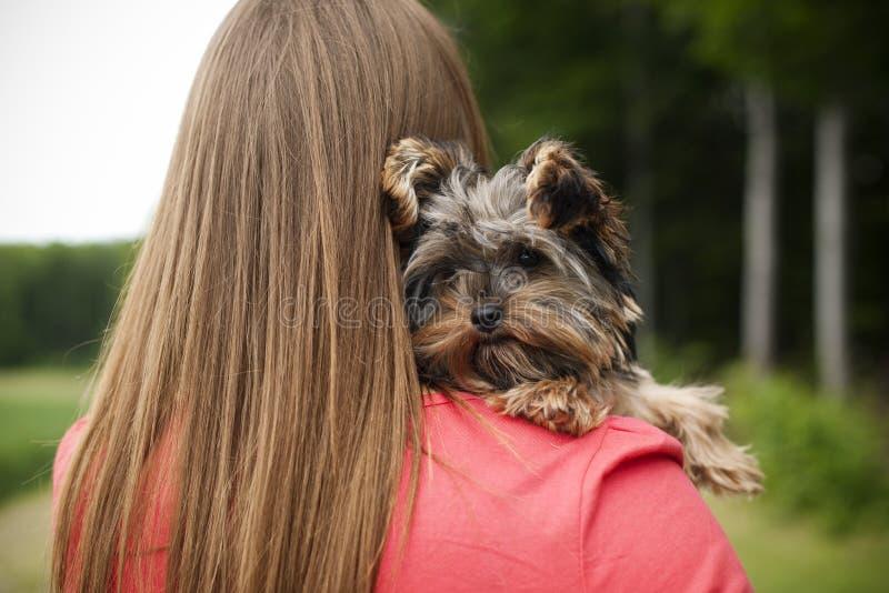 Puppy love stock photo