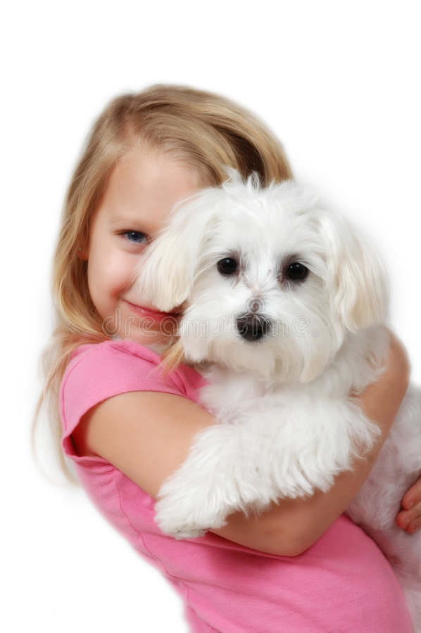 Puppy Love. Glowing soft look to a little girl with her first puppy on white background. Maltese Puppy