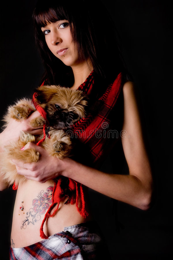 Puppy met stijl royalty-vrije stock afbeelding