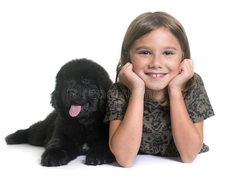 Puppy newfoundland dog and child royalty free stock photo
