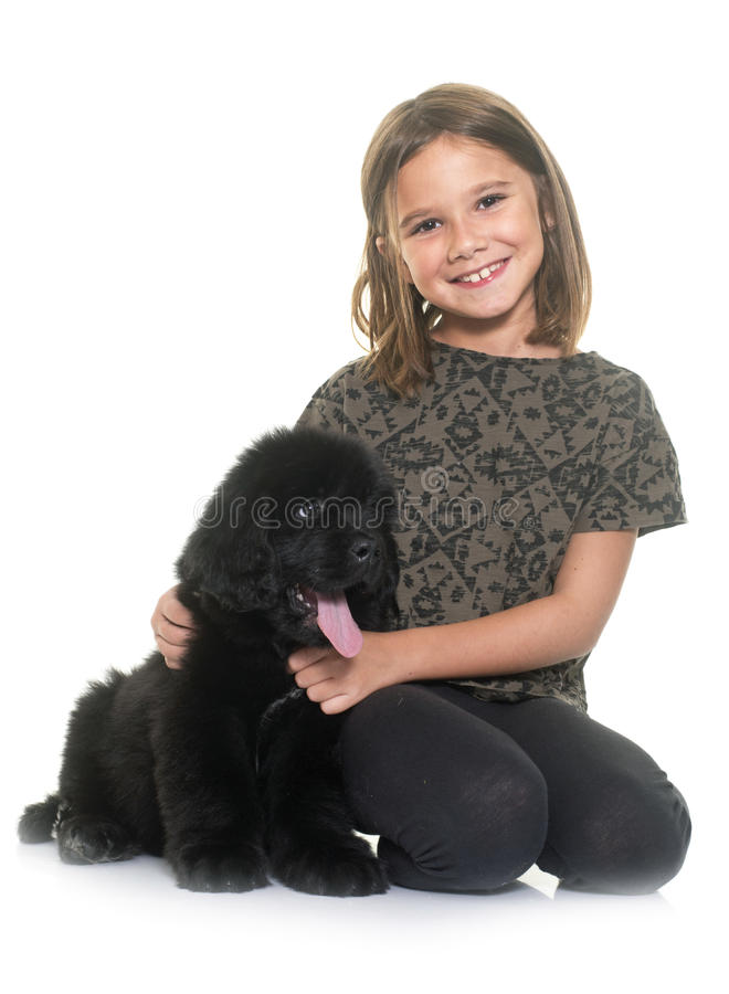 Puppy newfoundland dog and child royalty free stock images