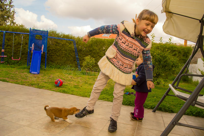 Puppy is playing with girl. Cute puppy is playing with children in the garden. Pulling pretty girl by the shoelaces stock photo