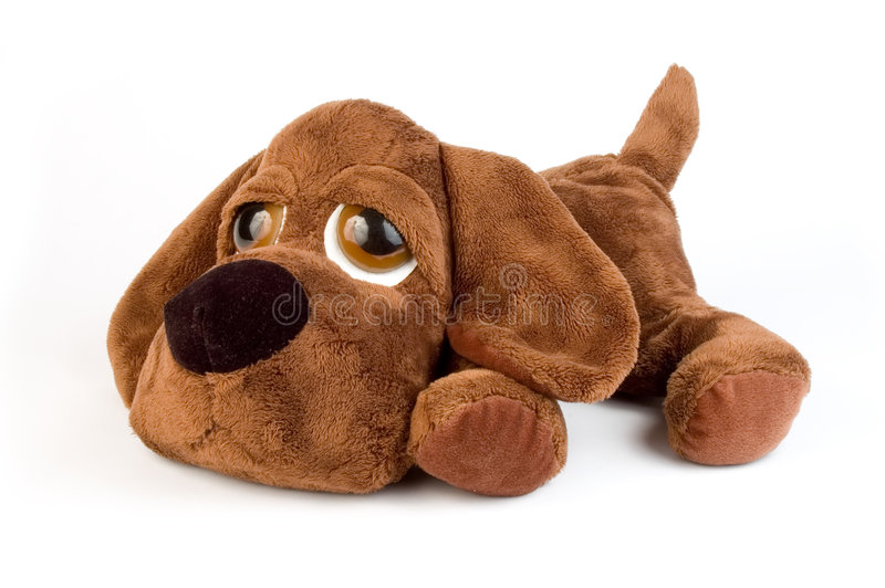 Download Puppy toy stock photo. Image of stuffed, furry, hairy - 1555068