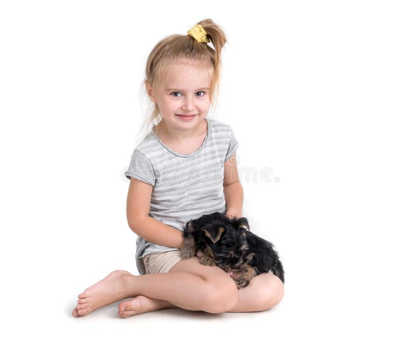 Puppy york and little girl. On a white background stock photos