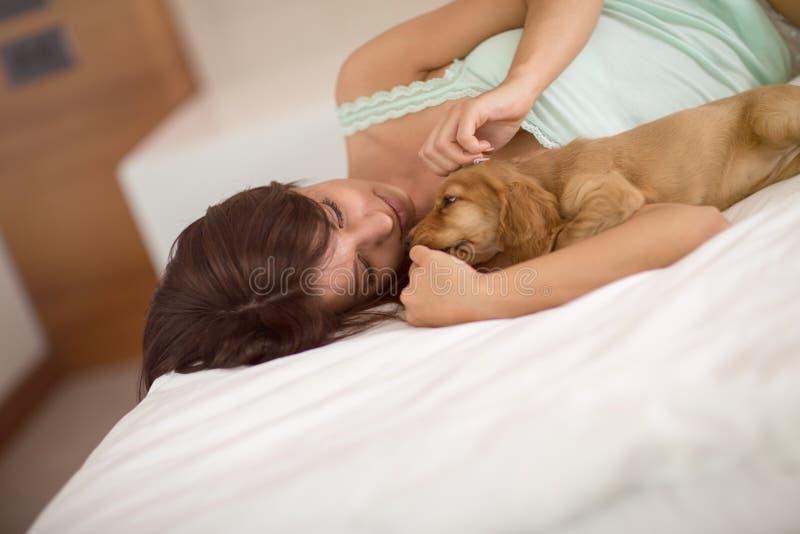Puppycocker-spaniël met vrouwelijke eigenaarknuffel stock afbeeldingen
