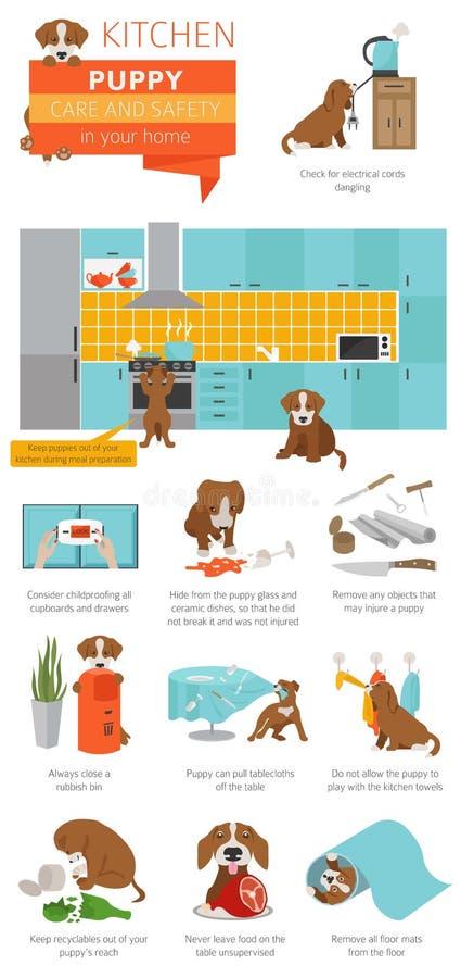 Puppyzorg en veiligheid in uw huis Keuken Huisdierenhond die binnen opleiden stock illustratie
