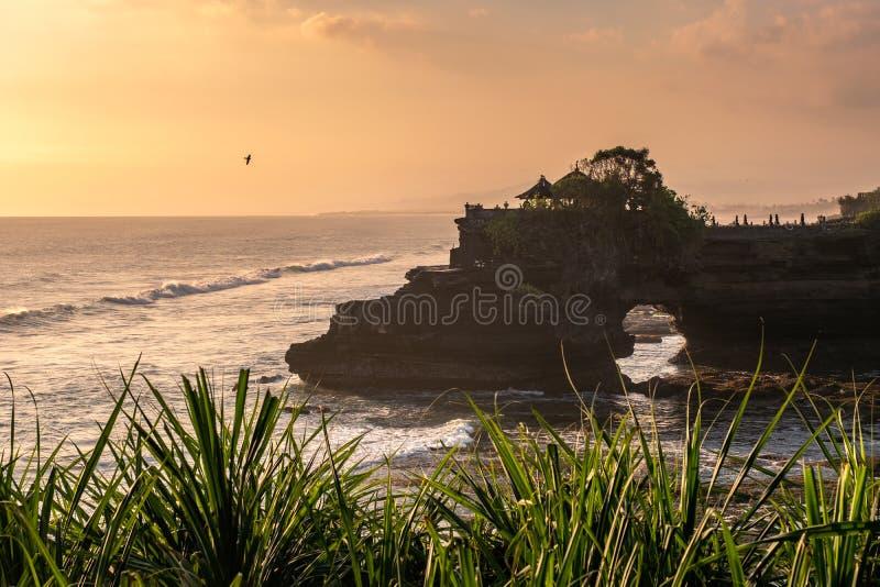 Pura Batu Bolong-tempel op rotsklip met boom op kustlijn bij stock foto's