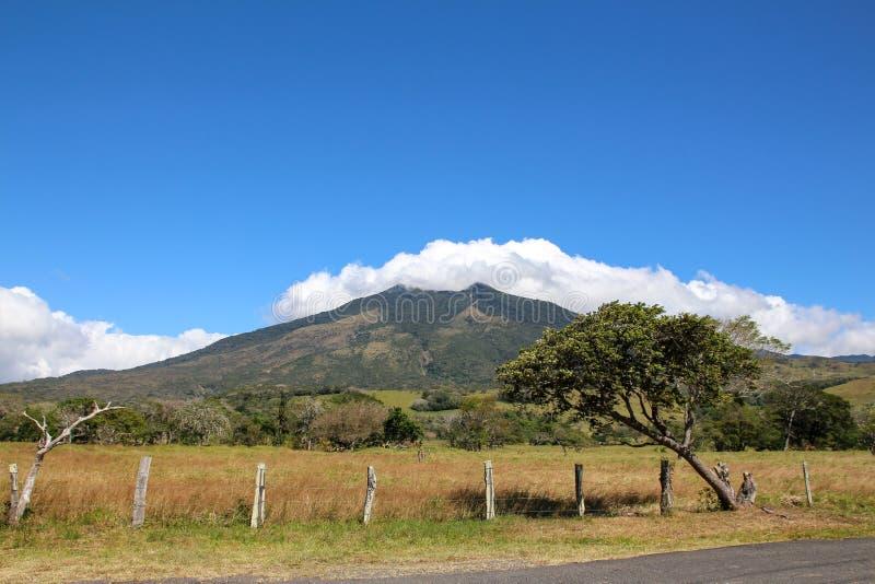 Pura Vida - denna är härliga Costa Rica arkivfoto
