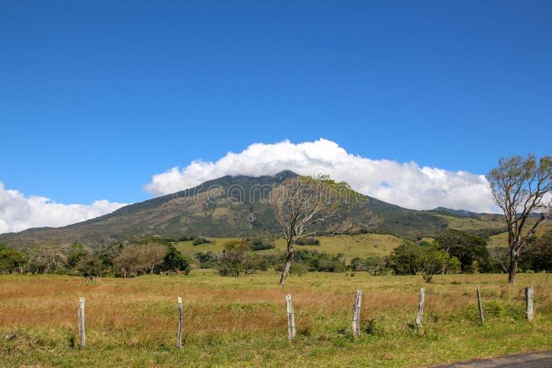 Pura Vida - dieses ist schöner Costa Rica lizenzfreie stockbilder