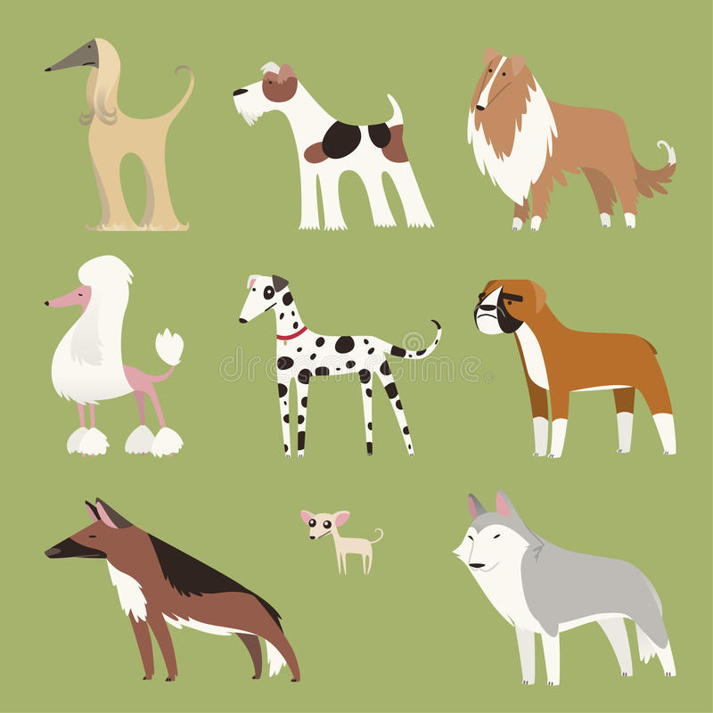 Pure breed dog collection stock illustration