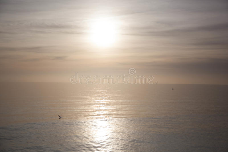 Pure Sun on the Sea stock images