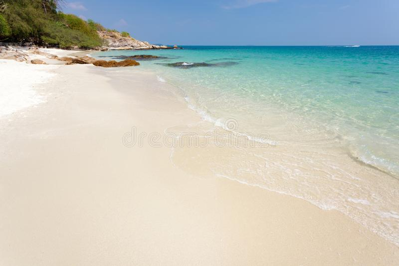 Download Pure tropical beach stock photo. Image of sunlight, shore - 25454982