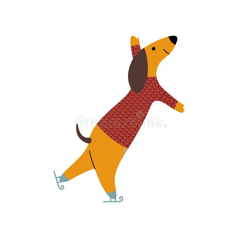 Purebred Brown Dachshund Dog Wearing Knitted Sweater Ice Skating, Funny Playful Pet Animal Cartoon Character Vector stock illustration