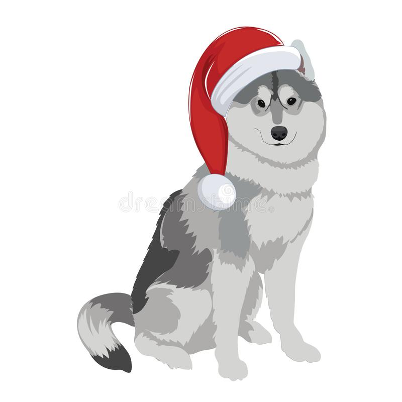 Husky with Christmas hat isolated on white background. stock illustration