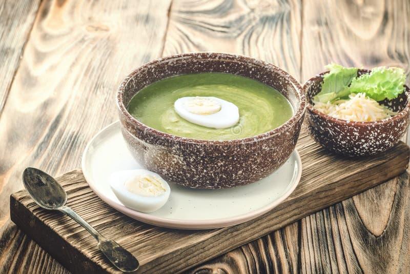 Puree kremową polewkę zielona liść sałata, szpinak i ser, obraz royalty free