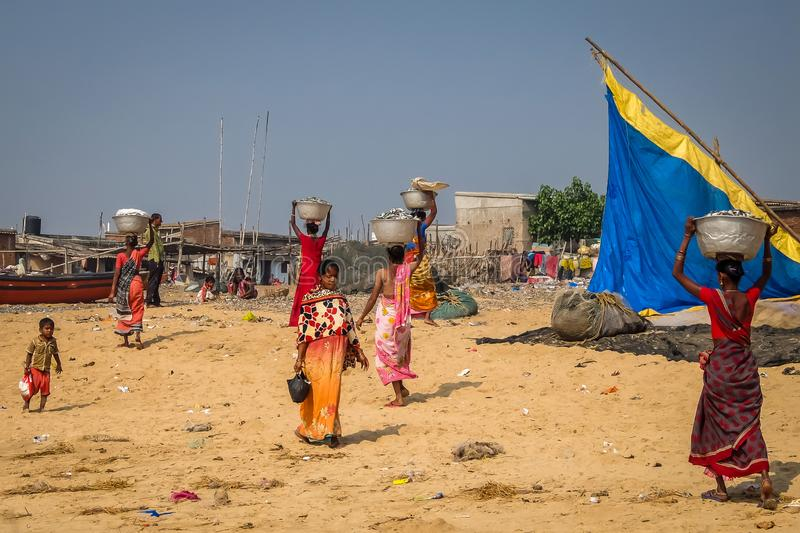 Indian women carring fish catch on the beach in Puri. royalty free stock photography