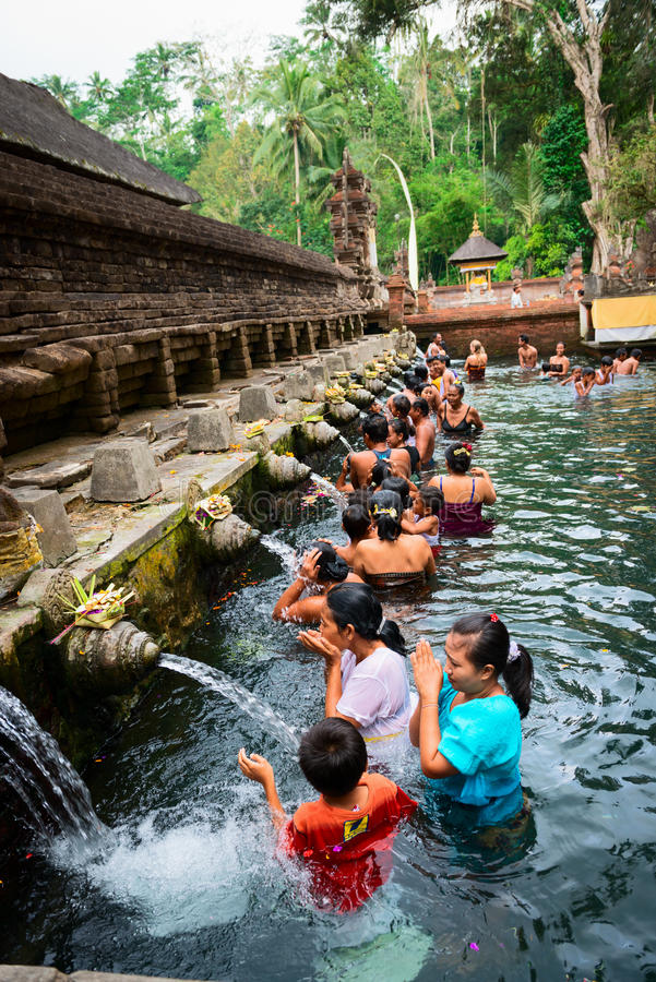 Purification In Sacred Holy Spring Water, Bali Editorial Stock Image