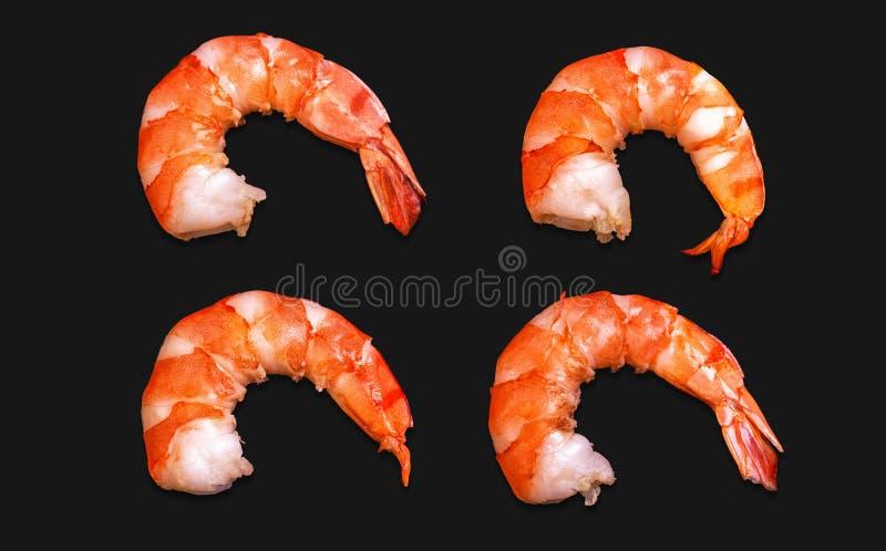 Purified ferveu o camarão real do jimbo imagem de stock royalty free
