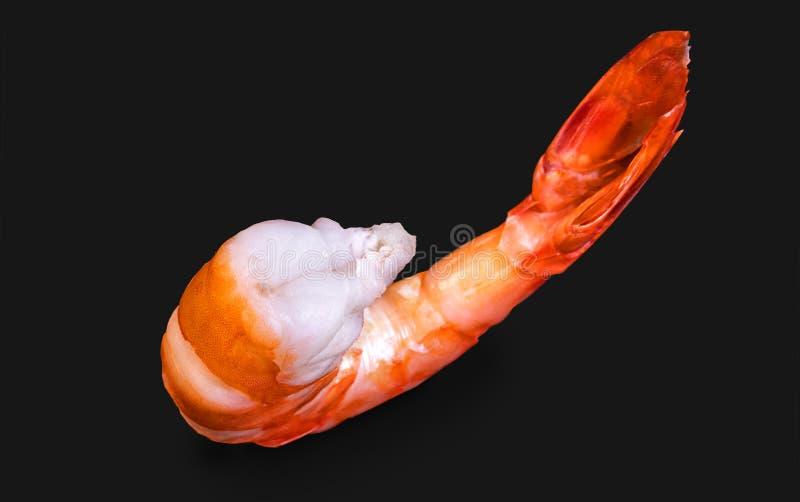 Purified ferveu o camarão real do jimbo imagem de stock