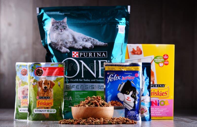 Purina zwierzęcia domowego artykuły żywnościowy fotografia stock