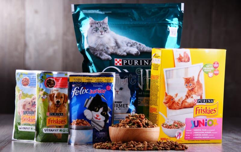 Purina zwierzęcia domowego artykuły żywnościowy zdjęcie stock