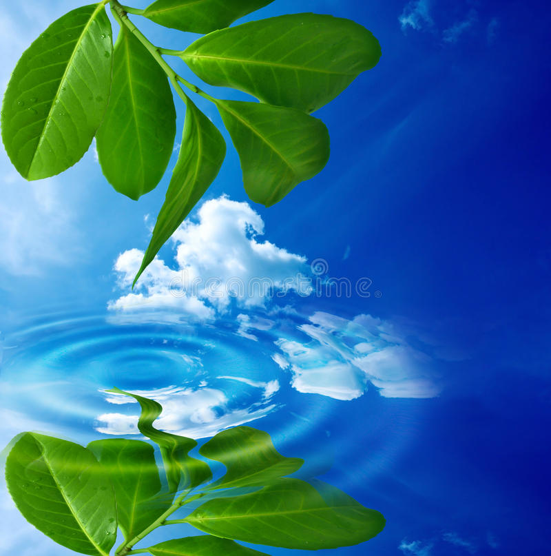 Purity background stock photos