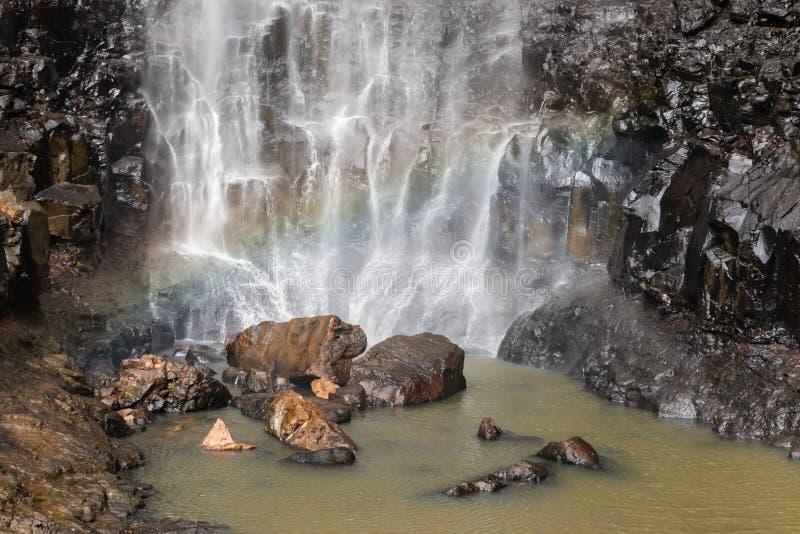 Purling strumyk spada w Springbrook parku narodowym, Queensland, Australia zdjęcie stock