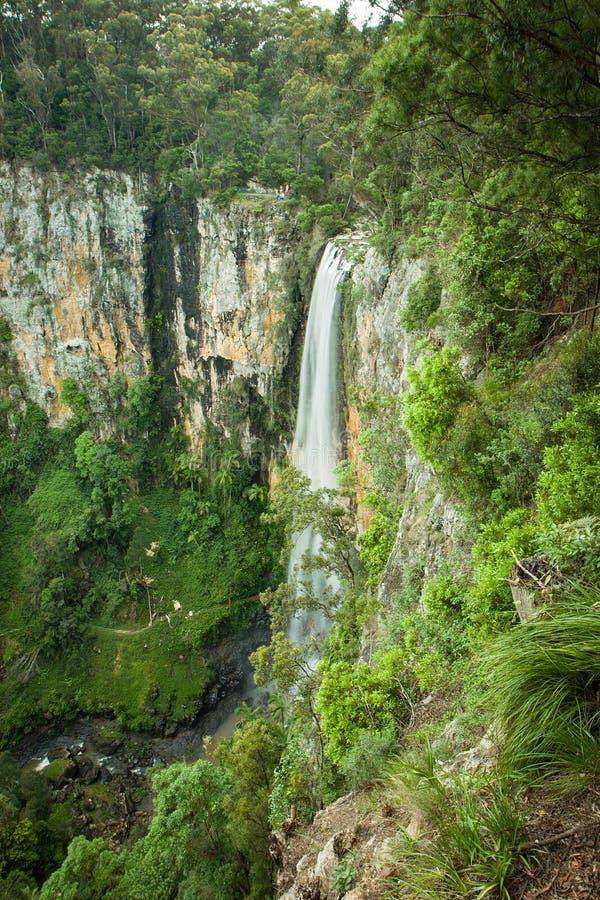 Purlingbrook Spada w Springbrook parku narodowym, złota wybrzeże, Australia obraz stock