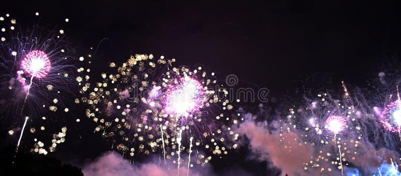 Purper vuurwerk in hemel stock fotografie