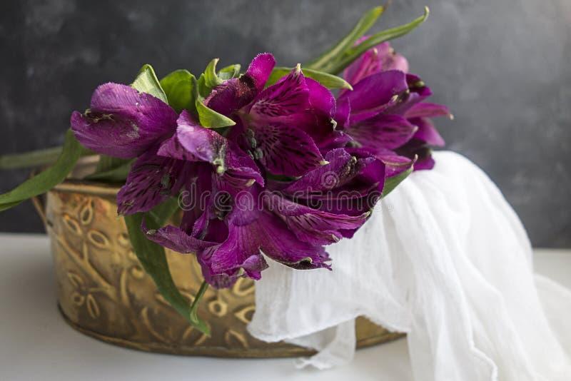 Purpere Alstroemeria in Messingstin royalty-vrije stock afbeelding