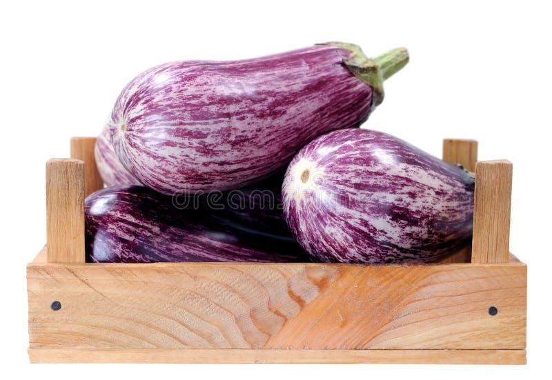 Purpere aubergine stock fotografie