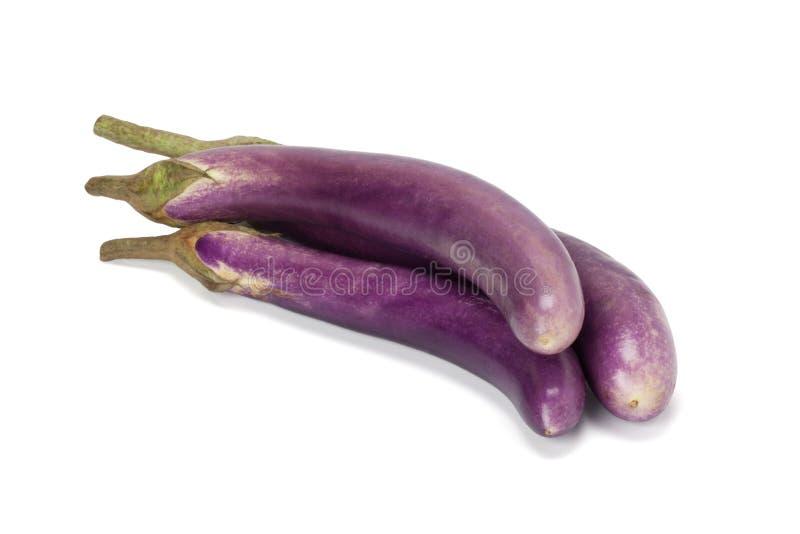 Purpere aubergine royalty-vrije stock afbeeldingen