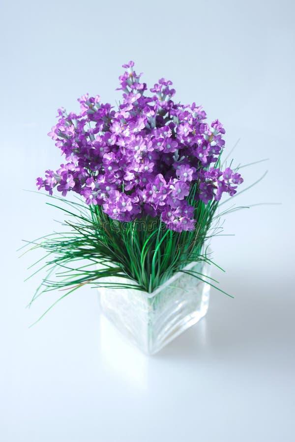 purpere bloemen in een vierkante glasvaas royalty-vrije stock afbeeldingen