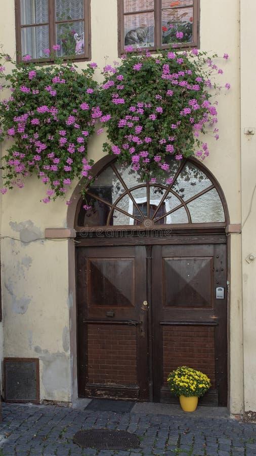 Purpere bloemmanden, gele installaties in gele pot en houten deur, middeleeuwse stad van Cesky Krumlov, Tsjechische Republiek stock foto