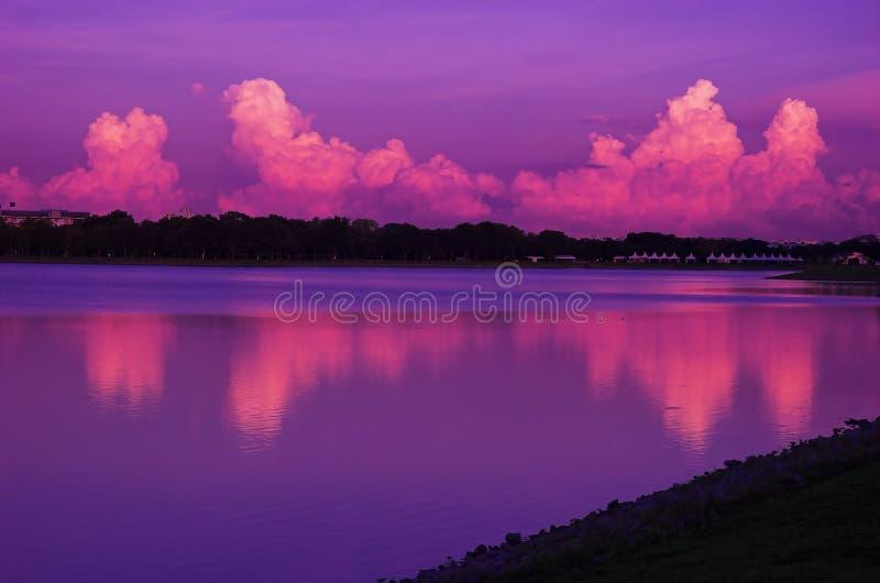 Purpere Dawn stock foto
