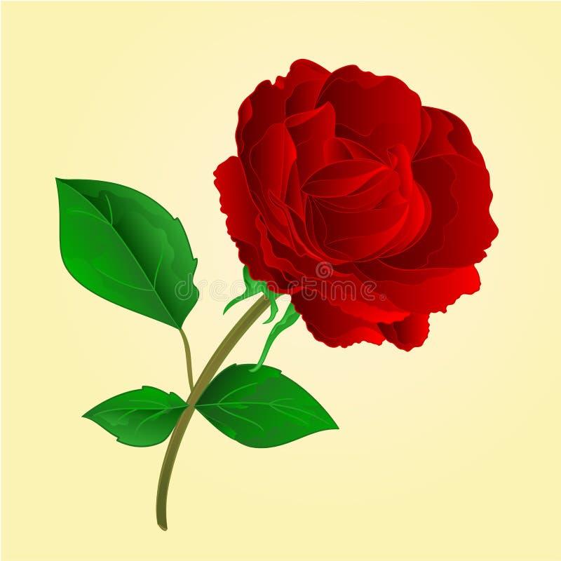 Purpere de bloem nam uitstekende vector toe royalty-vrije illustratie