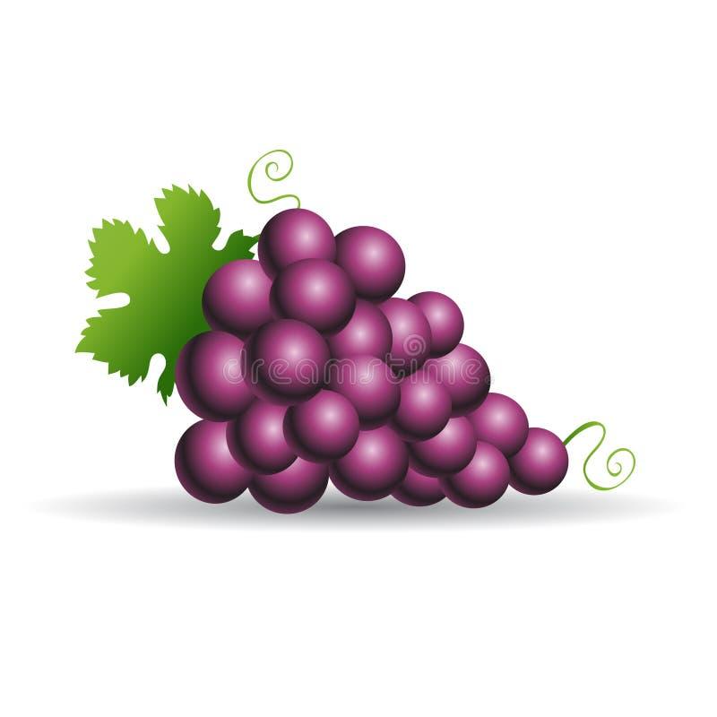 Purpere druiven royalty-vrije illustratie