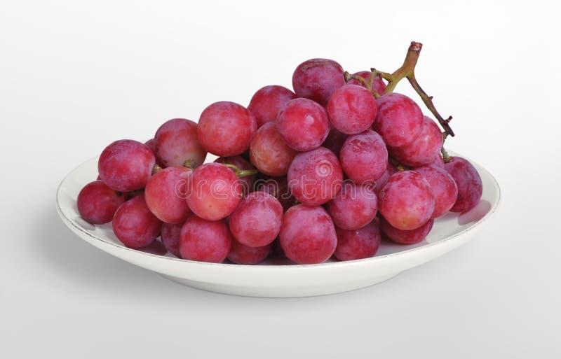 Purpere druiven op schotel royalty-vrije stock fotografie