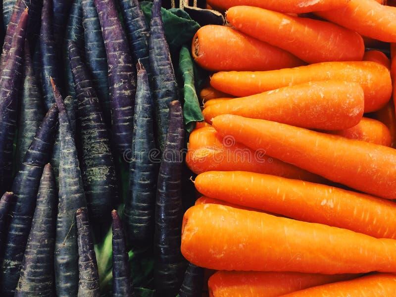 Purpere en oranje wortelen royalty-vrije stock fotografie