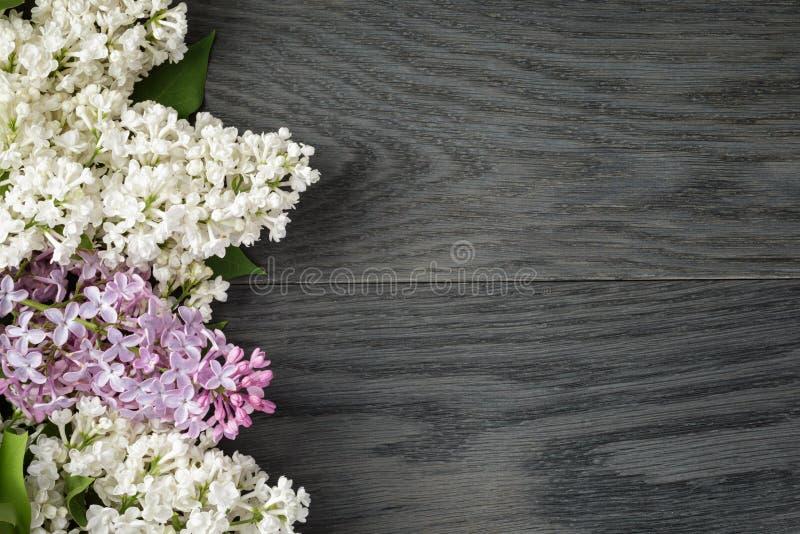 Purpere en witte lilac bloem op oude eiken lijstbovenkant royalty-vrije stock afbeeldingen