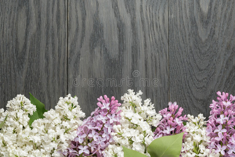 Purpere en witte lilac bloem op oude eiken lijstbovenkant royalty-vrije stock foto's