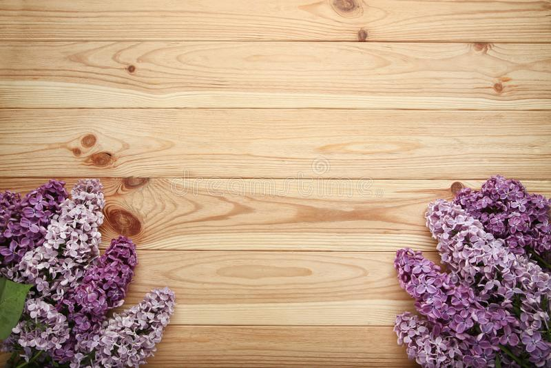 Purpere lilac bloemen stock afbeelding