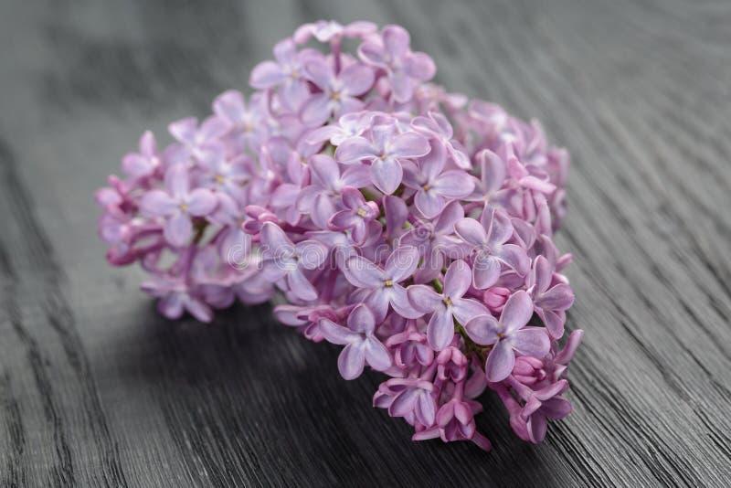 Purpere lilac bloemen op oude eiken lijst stock afbeelding