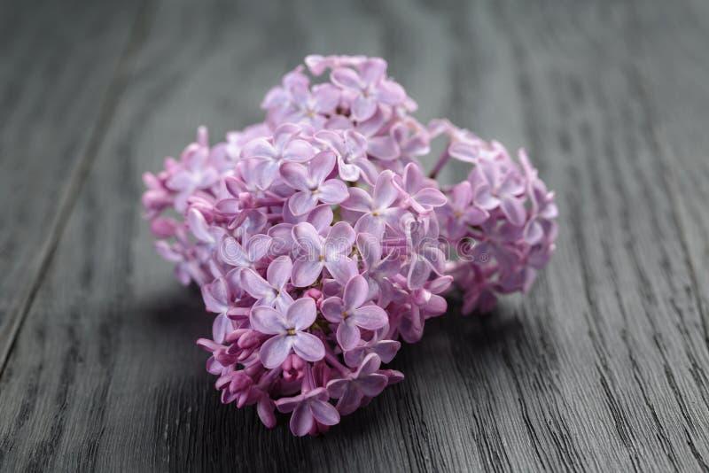 Purpere lilac bloemen op oude eiken lijst stock afbeeldingen