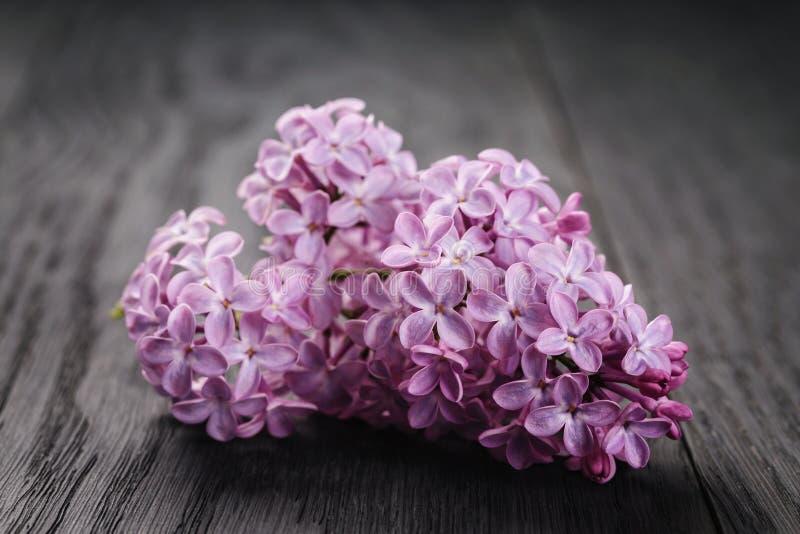 Purpere lilac bloemen op oude houten lijst stock foto