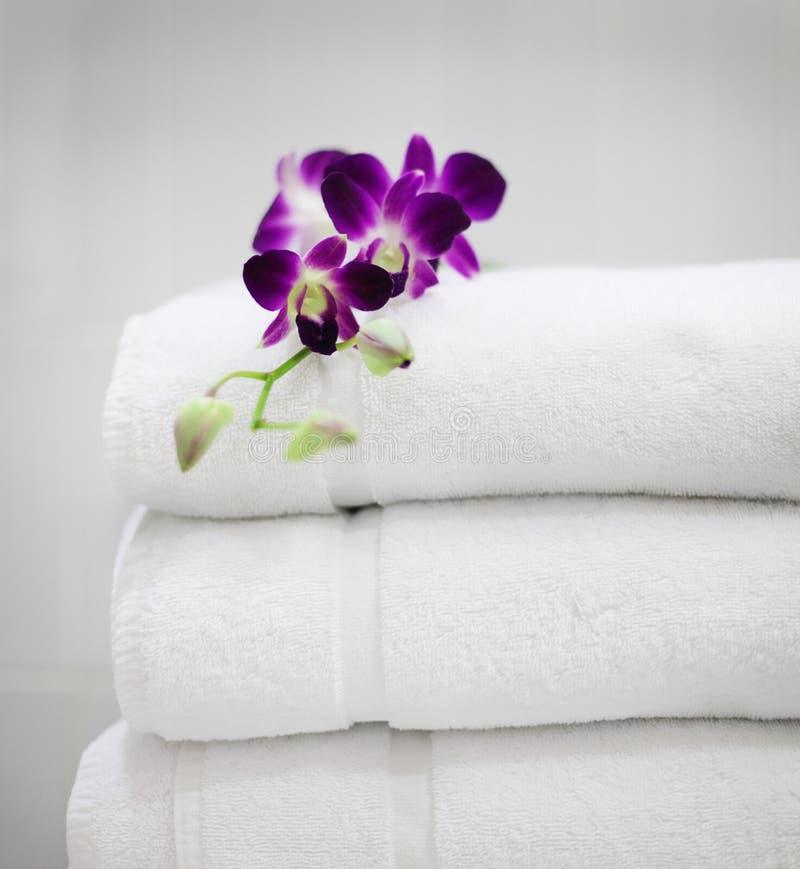 Purpere orchidee op witte handdoeken stock afbeelding