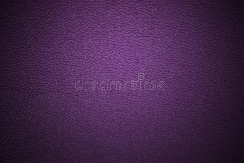 Purple stock photography