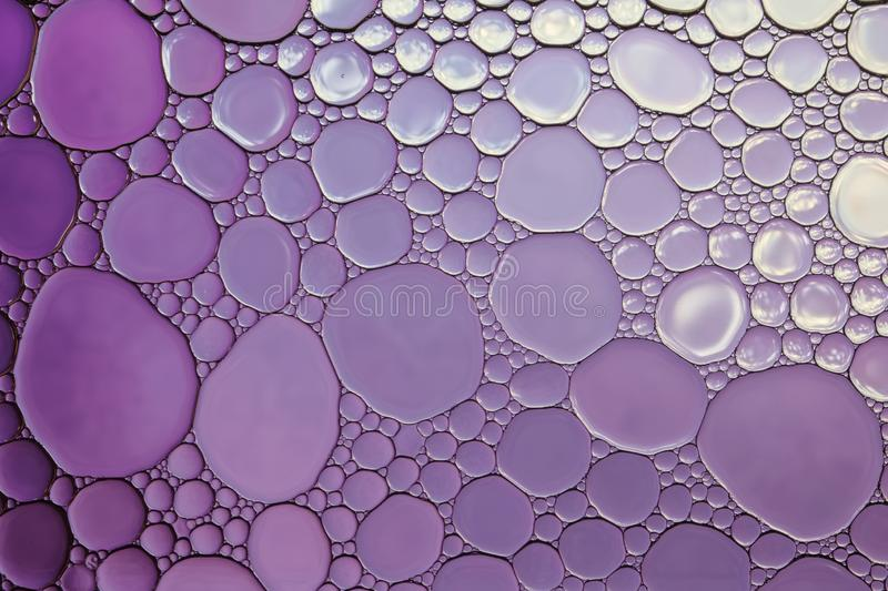 Purple abstract background. royalty free stock photo
